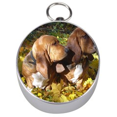 2 Bassets Silver Compasses
