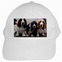 3 Basset Hound Puppies White Cap