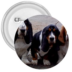 3 Basset Hound Puppies 3  Buttons