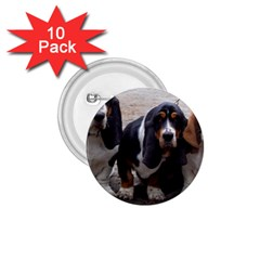 3 Basset Hound Puppies 1.75  Buttons (10 pack)