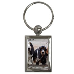 3 Basset Hound Puppies Key Chains (Rectangle)