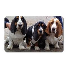 3 Basset Hound Puppies Magnet (Rectangular)