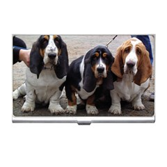 3 Basset Hound Puppies Business Card Holders