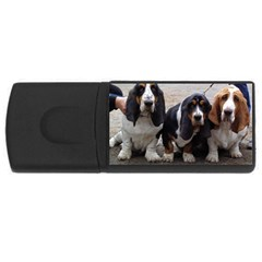 3 Basset Hound Puppies USB Flash Drive Rectangular (2 GB)