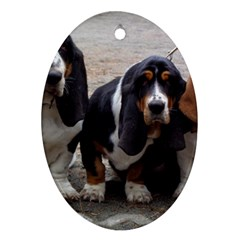 3 Basset Hound Puppies Oval Ornament (Two Sides)