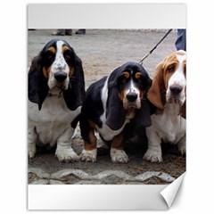 3 Basset Hound Puppies Canvas 12  x 16