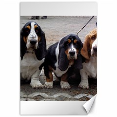 3 Basset Hound Puppies Canvas 12  x 18