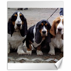 3 Basset Hound Puppies Canvas 16  X 20