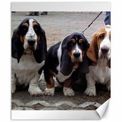 3 Basset Hound Puppies Canvas 20  x 24