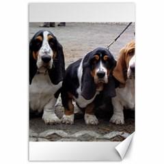 3 Basset Hound Puppies Canvas 24  x 36