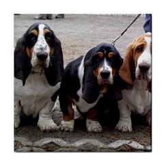 3 Basset Hound Puppies Face Towel