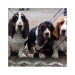 3 Basset Hound Puppies Acrylic Tangram Puzzle (6  x 6 )