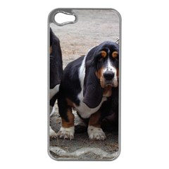 3 Basset Hound Puppies Apple iPhone 5 Case (Silver)