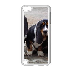 3 Basset Hound Puppies Apple iPod Touch 5 Case (White)