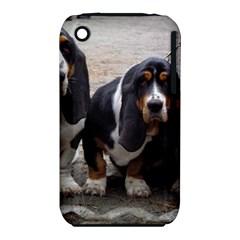 3 Basset Hound Puppies iPhone 3S/3GS