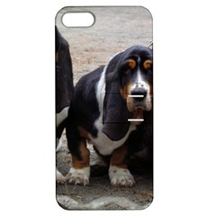 3 Basset Hound Puppies Apple iPhone 5 Hardshell Case with Stand