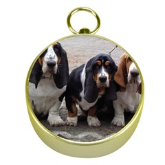 3 Basset Hound Puppies Gold Compasses