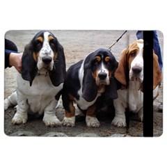 3 Basset Hound Puppies iPad Air 2 Flip