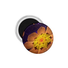 Beautiful Violet & Peach Primrose Fractal Flowers 1 75  Magnets