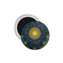 Beautiful Orange & Blue Fractal Sunflower Of Egypt 1 75  Magnets