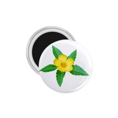 Yellow Flower With Leaves Photo 1 75  Magnets