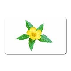 Yellow Flower With Leaves Photo Magnet (rectangular)