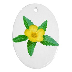 Yellow Flower With Leaves Photo Oval Ornament (Two Sides)