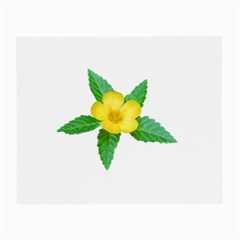 Yellow Flower With Leaves Photo Small Glasses Cloth (2-Side)