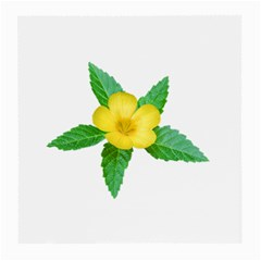 Yellow Flower With Leaves Photo Medium Glasses Cloth