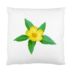 Yellow Flower With Leaves Photo Standard Cushion Case (One Side)