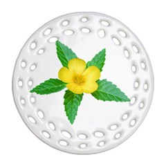 Yellow Flower With Leaves Photo Ornament (round Filigree)