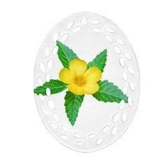 Yellow Flower With Leaves Photo Ornament (Oval Filigree)