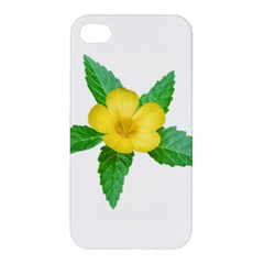 Yellow Flower With Leaves Photo Apple Iphone 4/4s Hardshell Case