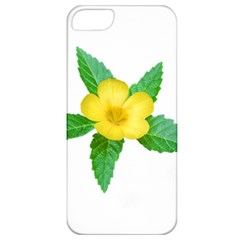Yellow Flower With Leaves Photo Apple iPhone 5 Classic Hardshell Case