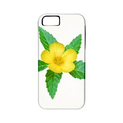 Yellow Flower With Leaves Photo Apple Iphone 5 Classic Hardshell Case (pc+silicone)