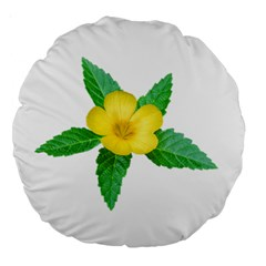 Yellow Flower With Leaves Photo Large 18  Premium Round Cushions