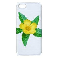 Yellow Flower With Leaves Photo Apple Iphone 5 Premium Hardshell Case
