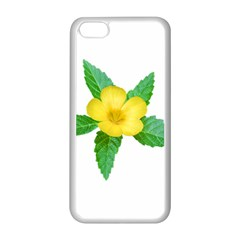 Yellow Flower With Leaves Photo Apple Iphone 5c Seamless Case (white)