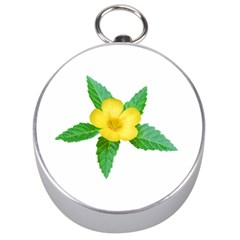 Yellow Flower With Leaves Photo Silver Compasses