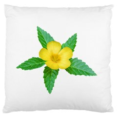 Yellow Flower With Leaves Photo Standard Flano Cushion Case (One Side)