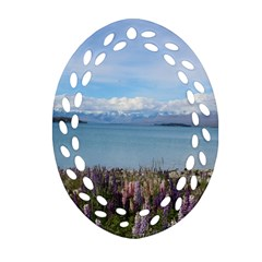 Lake Tekapo New Zealand Landscape Photography Oval Filigree Ornament (two Sides)