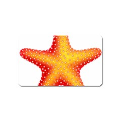 Starfish Magnet (name Card)