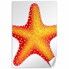 Starfish Canvas 24  X 36