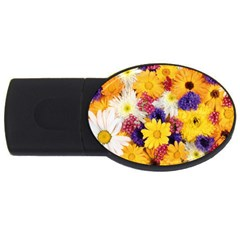 Colorful Flowers Pattern Usb Flash Drive Oval (2 Gb)