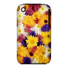 Colorful Flowers Pattern Iphone 3s/3gs