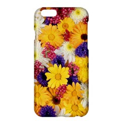 Colorful Flowers Pattern Apple Iphone 6 Plus/6s Plus Hardshell Case