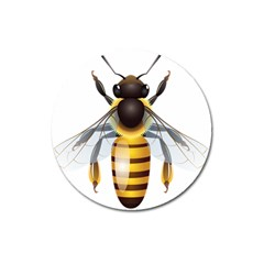 Bee Magnet 3  (round)