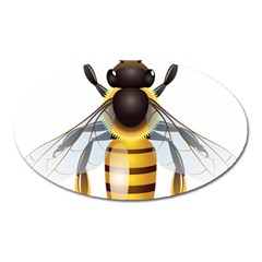 Bee Oval Magnet