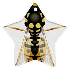 Wasp Ornament (star)