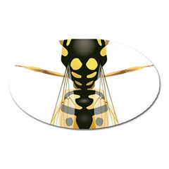 Wasp Oval Magnet